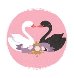 white and black swans character swans in love vector image