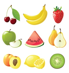 set of 9 juicy fruits icons vector image vector image