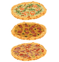 a set of different pizzas vector image