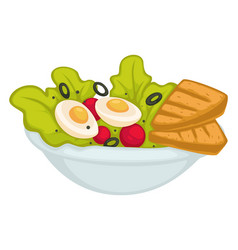 Bowl with salad and olive eggs and toast vector