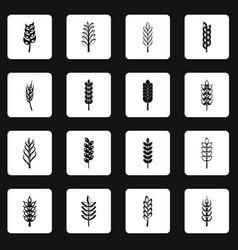 Ear corn icons set squares vector