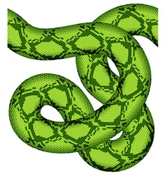 Green snake seamless vector