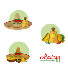 Mexican food collection vector
