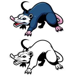 Possum on white vector