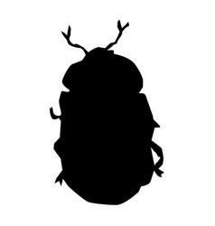 Silhouette golden beetle vector