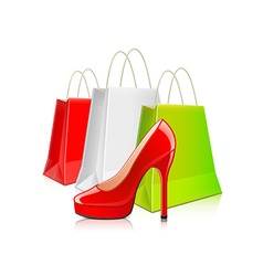 Shopping packages and woman shoes isolated vector image vector image