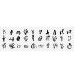 doodle sketch hand drawn cactuses set collection vector image