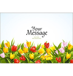 Flowers background with tulips vector