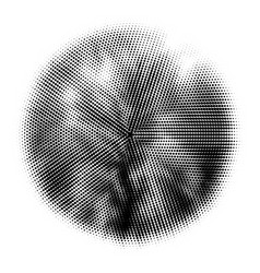 halftone circles halftone pattern dot vector image