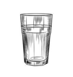 Hand drawn highball glass collin glass isolated vector