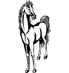Horse 3 vector
