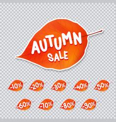 trendy autumn leaf sale tag vector image