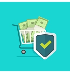 Ecommerce payment protection protected cash vector image vector image