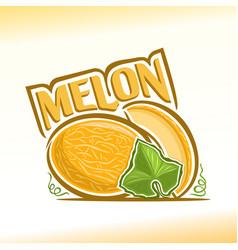 melon still life vector image vector image