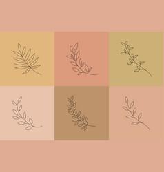 botanical line art leaves boho minimal vector image