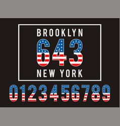 brooklyn textured flag usa vector image