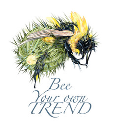 fashion with hybrid bee and cactus vector image