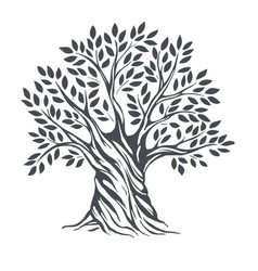hand-drawn olive sketch vector image