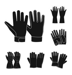 isolated object of glove and winter symbol vector image