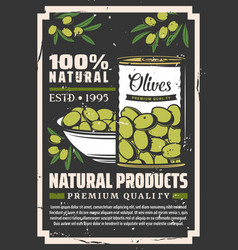 Pickled green olive fruits in tin can and bowl vector