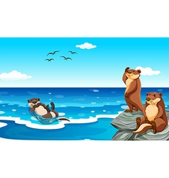 Sea otter living in the ocean vector