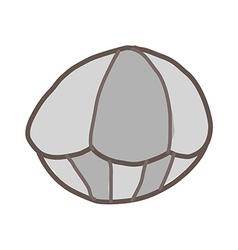 A clam vector