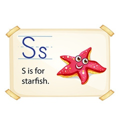 A letter s for starfish vector