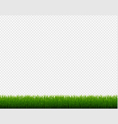 Green grass frame isolated transparent background vector