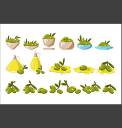 green olives set olive oil in a glass jug vector image
