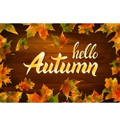hello autumn text on wooden background orange leaf vector image