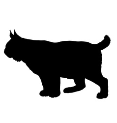 Lynx silhouette vector