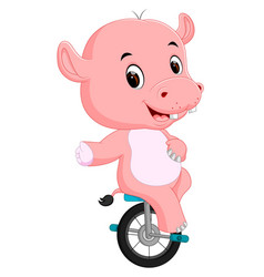 cute happy hippopotamus riding unicycle vector image vector image