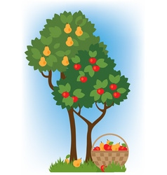 apple and pear trees vector image