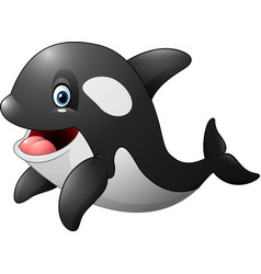 Cute orca isolated on white background vector