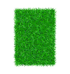 Green grass background 3d isolated on white lawn vector