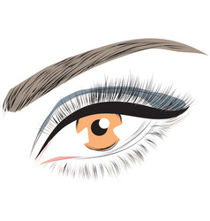 hazel brown female closed female eye vector image