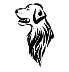 Image an dog labrador vector