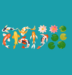 koi carp asian fishes top view colorful vector image