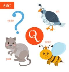 Letter Q Cartoon alphabet for children Quail vector