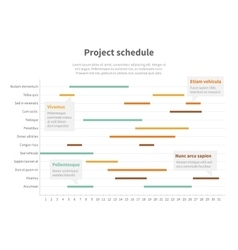Project plan schedule chart with timeline gantt vector