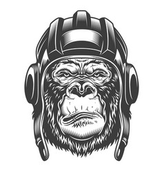 serious gorilla in monochrome style vector image