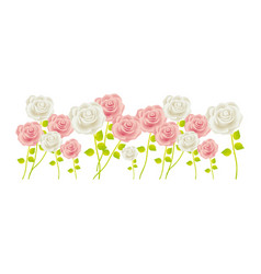 bunch roses with stem and leaves floral design vector image