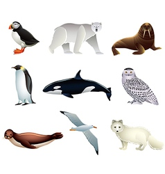 arctic animals vector image