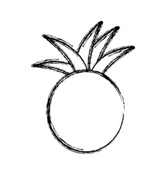 Contour pineapple fruit icon stock vector