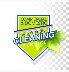 eco friendly cleaning vector image