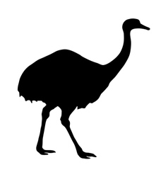Greater rhea silhouette vector
