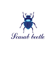 scarab beetle vector image