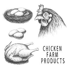 set monochrome chicken farm products vector image