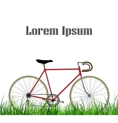 Bicycle isolated on white background with gras vector image