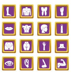 Body parts icons set purple vector